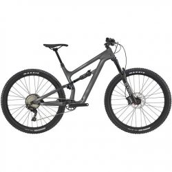 Cannondale Habit Waves 2021 Mountain Bike - Silver