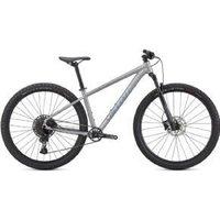 Specialized Rockhopper Expert 29er Mountain Bike  2021 Large - Satin Silver Dust/Black Holographic